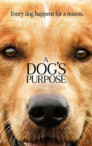 A-Dogs-Purpose-2017.jpg